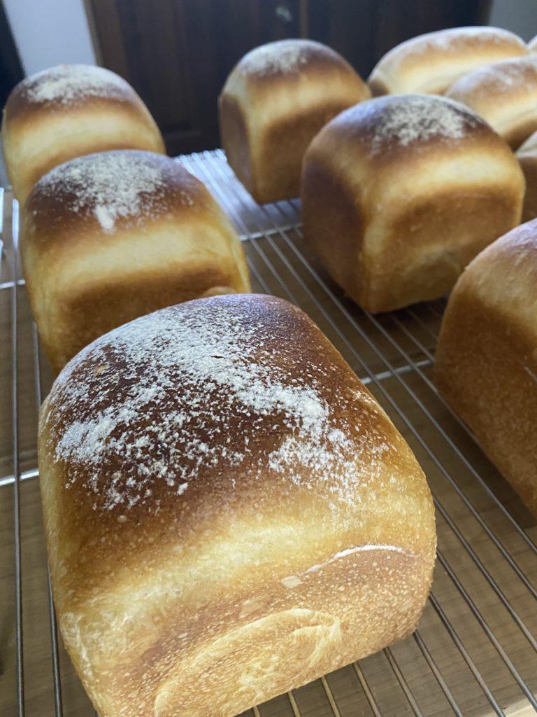 Durum toast デュラム小麦×オーガニックアーティザン