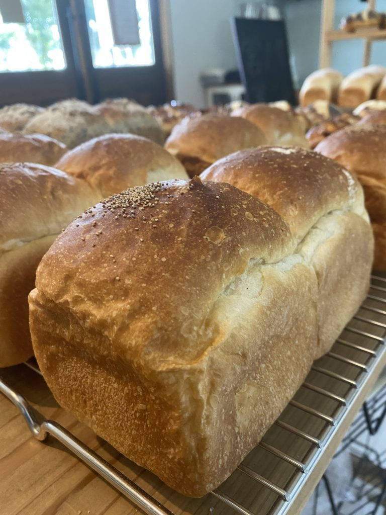 Bread 湯種ブレッド