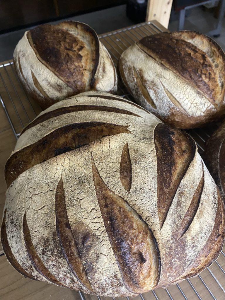 Sourdough bread ゆぎっ小麦全粒粉使用のサワードウ(大)